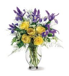 Teleflora's Clear Inspiration Bouquet (07R110B)