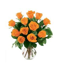 12 Orange Roses (12ORROSE)