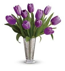 Tantalizing Tulips Bouquet by Teleflora (TEV23-8A)