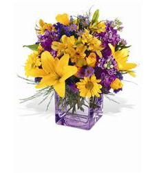 Teleflora's Morning Sunrise Bouquet (TF-WEB2)