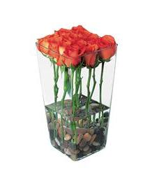 Red Roses with River Rocks (TF38-3)