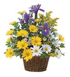Smiling Spring Basket (TF58-1)