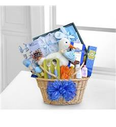 Special Stork Delivery Baby Boy Basket (WGG332)