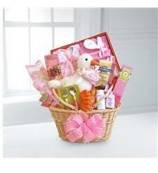 Special Stork Delivery Baby Girl Basket (WGG333)