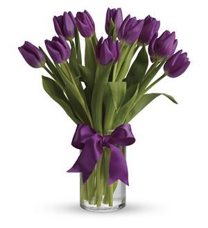 Passionate Purple Tulips (T148-2A)