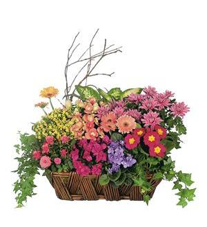 Deluxe European Garden Basket (TF125-1)